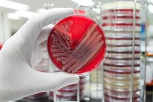 Are Indian hospitals to blame? Question after superbug infection kills...