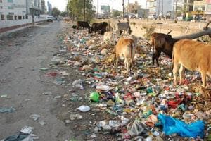 Chinese company to manage solid waste of Lucknow
