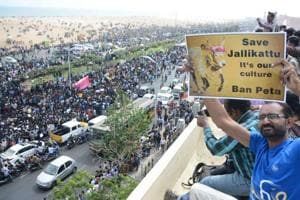 People shout slogans and hold placards during a demonstration against the ban on the Jallikattu, and calling for a ban on animal rights orgnisation PETA, at Marina Beach at Chennai on Wednesday.