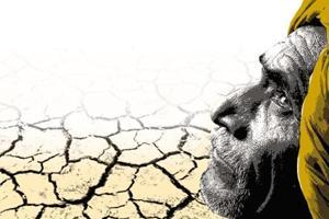 InMaharashtra:Despite good rain and government schemes,  farmer...