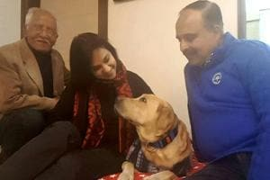 Labrador snatched from retired wing commander in Gurgaon found