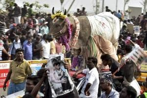 Ordinance right step to bring back Jallikattu, protesters go home:...