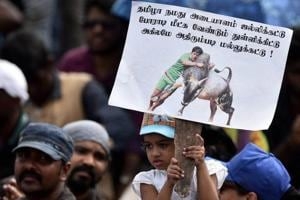 People at Chennai's Marina Beach protest to lift ban on Jallikattu and impose ban on PETA.