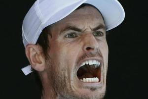 Andy Murray says he won't give up, will be back to win Australian Open...