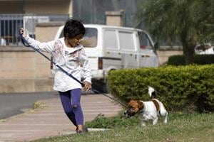 Gurgaon resident bodies tighten norms for pet owners