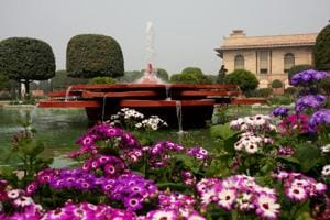 Have a blooming weekend with Lincoln, Jawahar and Elizabeth at Delhi's Mughal Gardens