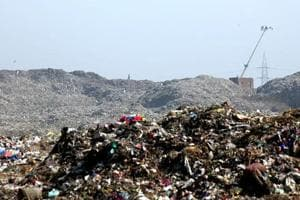 Issue work order for waste processing plant in one month, National Green Tribunal tells Mira Bhayander Municipal Corporation