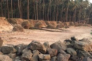 Illegal sand mining uprooted 25 trees at Nandgaon beach, says NGO