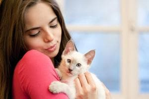 Cat owners, breathe easy. Your pet does not put you at risk for mental...