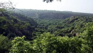 Body formed in Gurgaon to evaluate status of PLPA land in Aravallis