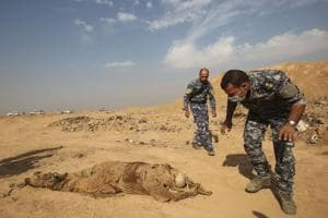 130 bodies of fighters found in two mass graves in Syria: Human Rights...