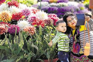 Over 4,000 people visit second day of Noida Flower Show