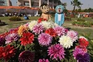 In Pics: Exotic plants a hit as three-day flower show in Noida ends