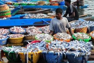 Tamil Nadu: Fishermen to go on indefinite strike to protest annual fishing ban