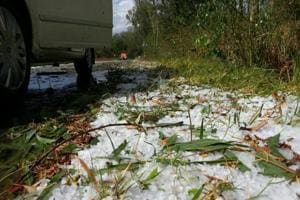 Maharashtra most vulnerable to hailstorms: IMD
