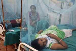 India to launch a national dengue survey to better combat the disease