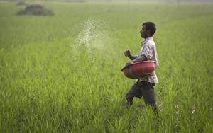 Fertiliser sales to see moderate growth in H1 FY18: ICRA