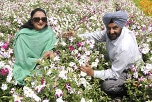 VIDEO | Blooming business, but for a few: The state of floriculture in Punjab