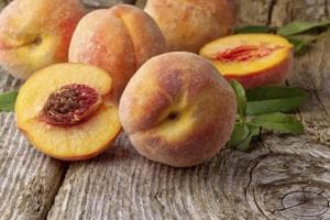 Fruits help build large, powerful brains: Study