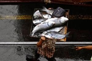Spurt in sale, prices of fish in Lucknow after UP govt's crackdown on...