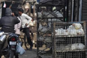 All meat shops in Noida are illegal, says food safety department