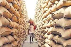 Punjab vigilance to probe Rs 31,000-crore foodgrain 'scam' in SAD-BJP...