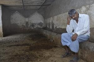 Ghaziabad: Illegal slaughter ban will bring down cattle thefts, say...