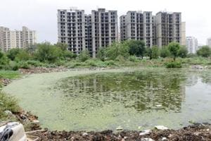 MCG plans to revive seven water bodies before monsoon