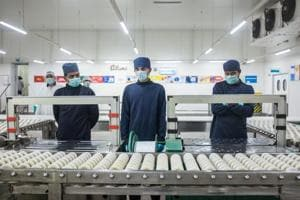 Workers at Allanasons frozen packaging department stand idle as production has hit an all-time low.