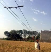 President of the district unit of the Jamhoori Kisan Sabha Iqbal Singh Phaphre showing the hanging hightension wire over a field in Mansa on Friday..