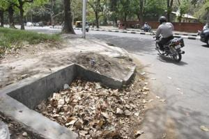Leaves blocking a stormwater drain in Chandigarh.