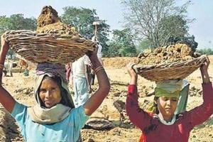 MGNREGA clean-up leaves many jobless in Jharkhand