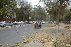 Respite in sight: Clouded with dust, Chandigarh to get light rain on...