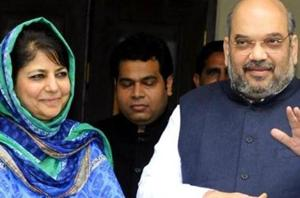 No differences with PDP, J-K govt working well: BJP