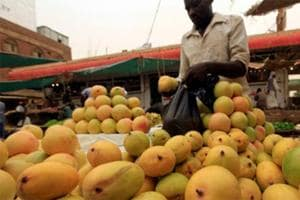 India to export mangoes to Australia for the first time