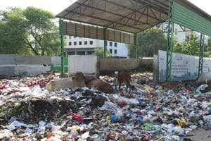 A garbage dump near Phase 11, SASNagar. All residential areas, offices, institutions will be covered under the project.