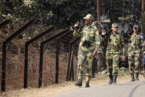 BSF finds tunnel in north Bengal used to smuggle cattle to Bangladesh