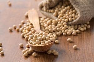 Study shows soy protein reduces the severity of inflammatory bowel...