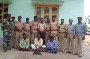 Karnataka: 3 held for stealing Prince's teeth from his carcass at...