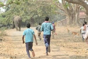 Villagers drive away an elephant which had strayed in Khalgaon area of Bhagalpur district from Godda district of neighbouring Jharkhand state.