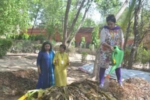 Committed to environment conservation, these women are on a green...