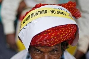 RSS-affiliate writes to PM Modi opposing nod to GM mustard