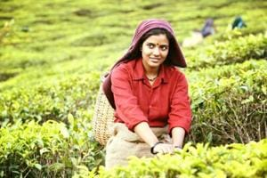 Abhay Deol's a sweet person: Aishwarya Rajesh on her Idhu Vedhalam...