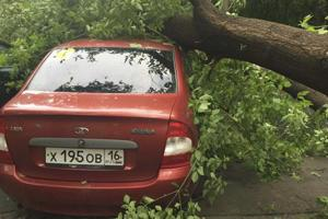 11 people killed as strong winds, thunderstorms hit Moscow