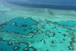 Australia's Great Barrier Reef bleaching worse than first...