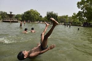 NGT suggests 'fishy' way out to prevent mosquitoes in  fountains