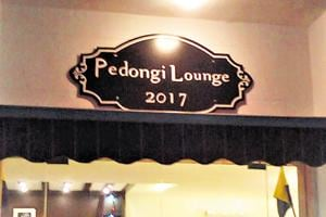 In Delhi, army mess lounge named after longest-serving mule 'Pedongi'