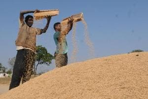 Farmers who repay the loan on time will be provided an interest subsidy of 5%.