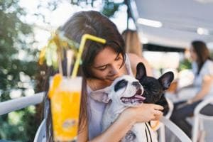 Pet cafes are a good way to bond with animals and de-stress.