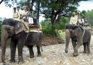 Corbett, Rajaji gear up for monsoon patrolling